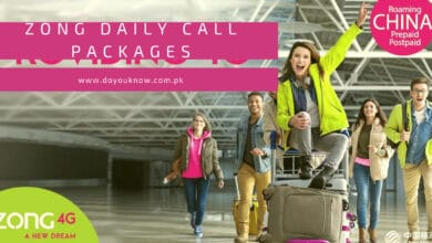 Photo of Zong Daily Call Packages