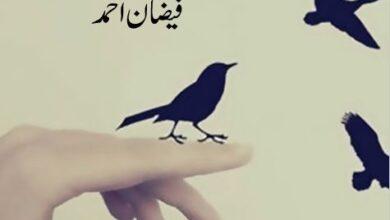 Photo of Uraan Novel by Faizan Ahmad