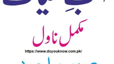 Photo of Free download Aab-e-Hayat by Umera Ahmed