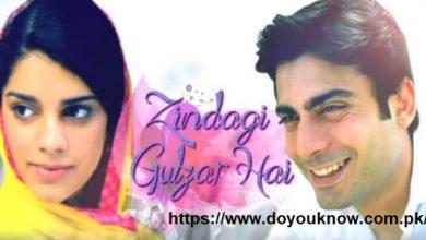 Photo of Zindagi Gulzar Hai Novel by Umera Ahmed